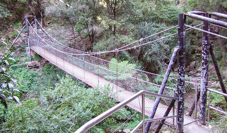 Jenolan River walking track - Whitsundays Tourism