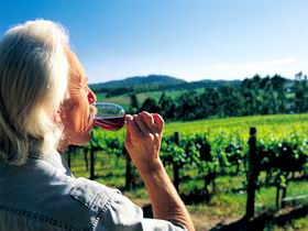 Ashton Hills Vineyard - Whitsundays Tourism