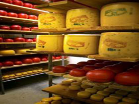 Alexandrina Cheese Company - Whitsundays Tourism