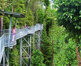 Mamu Tropical Skywalk - Whitsundays Tourism