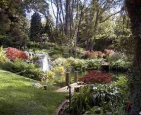 Windyridge Garden Mount Wilson - Whitsundays Tourism