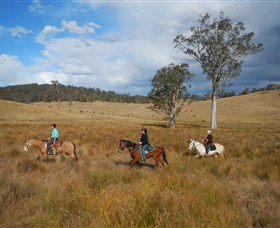 Chapman Valley Horse Riding - Whitsundays Tourism