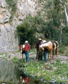 Yarramba Horse Riding - Whitsundays Tourism