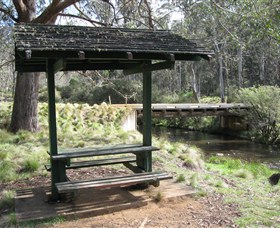 Barrington Tops State Forest - Whitsundays Tourism