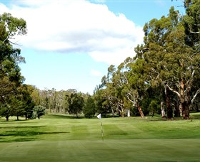 Cooma Golf Club - Whitsundays Tourism