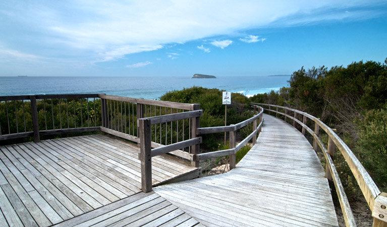 Tea Tree picnic area and lookout - Whitsundays Tourism