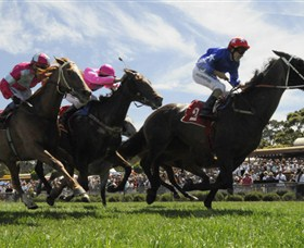 Moruya Racecourse - Whitsundays Tourism