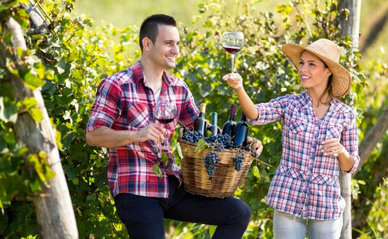 Two Tails Wines - Whitsundays Tourism