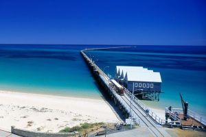 Full-Day Busselton Jetty Train Ride  Dophin Discovery - Whitsundays Tourism