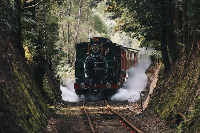 West Coast Wilderness Railway: River and Rainforest from Strahan