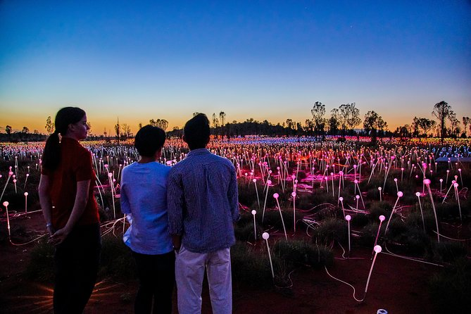 Uluru Field of Light Sunrise Tour - Whitsundays Tourism