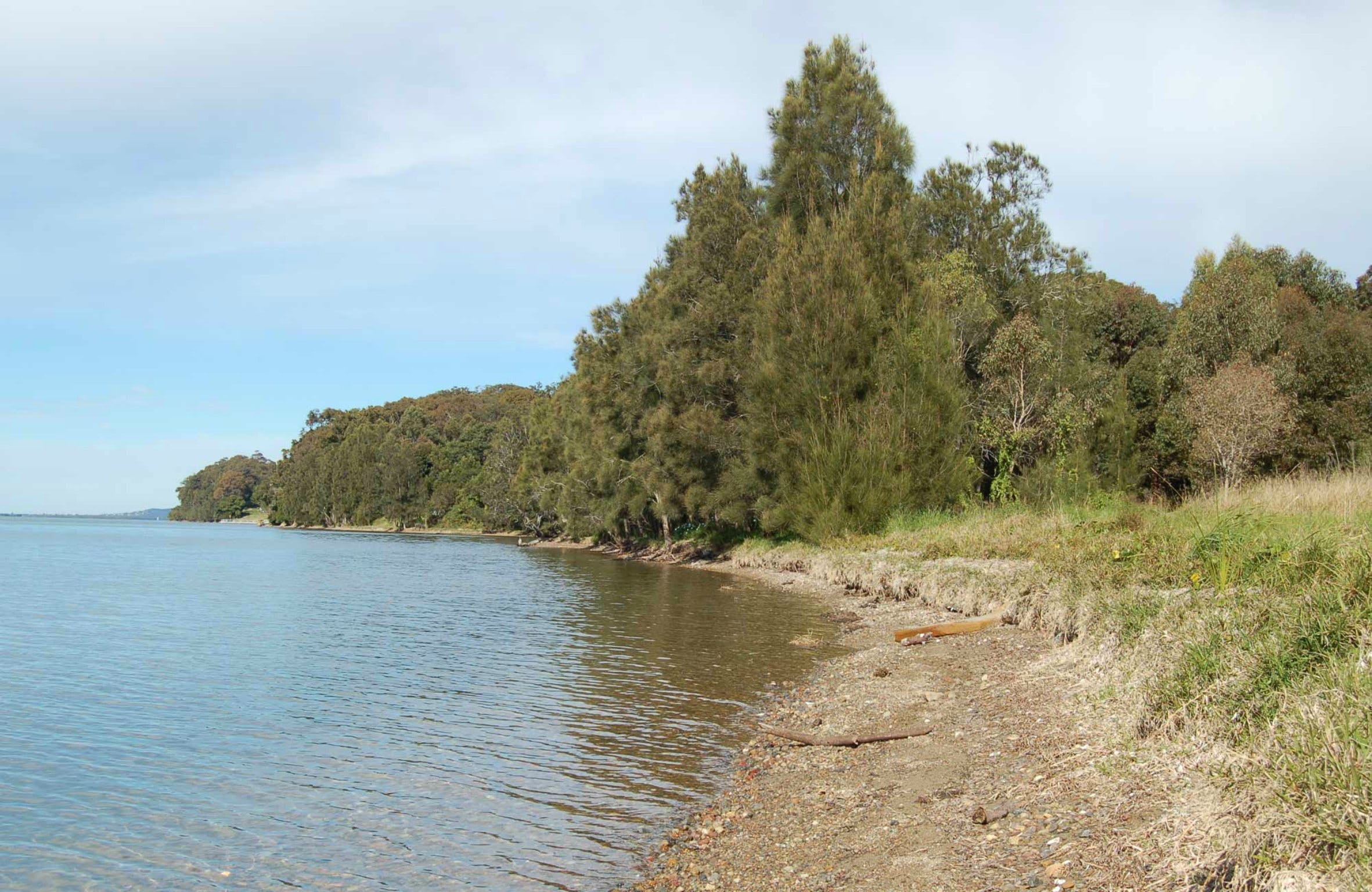 Lake Macquarie State Conservation Area - Whitsundays Tourism