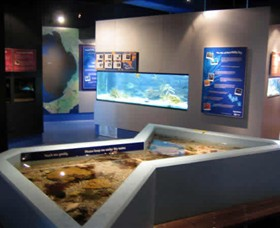 Marine and Freshwater Discovery Centre - Whitsundays Tourism