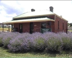 Lavender House in Railway Park - Whitsundays Tourism