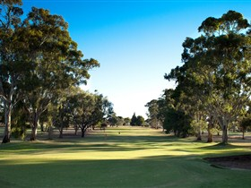 Loxton Golf Club - Whitsundays Tourism