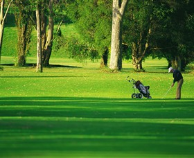 Foster Golf Club - Whitsundays Tourism