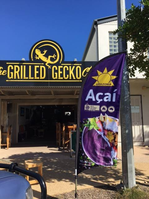 The Grilled Gecko Cafe - Whitsundays Tourism