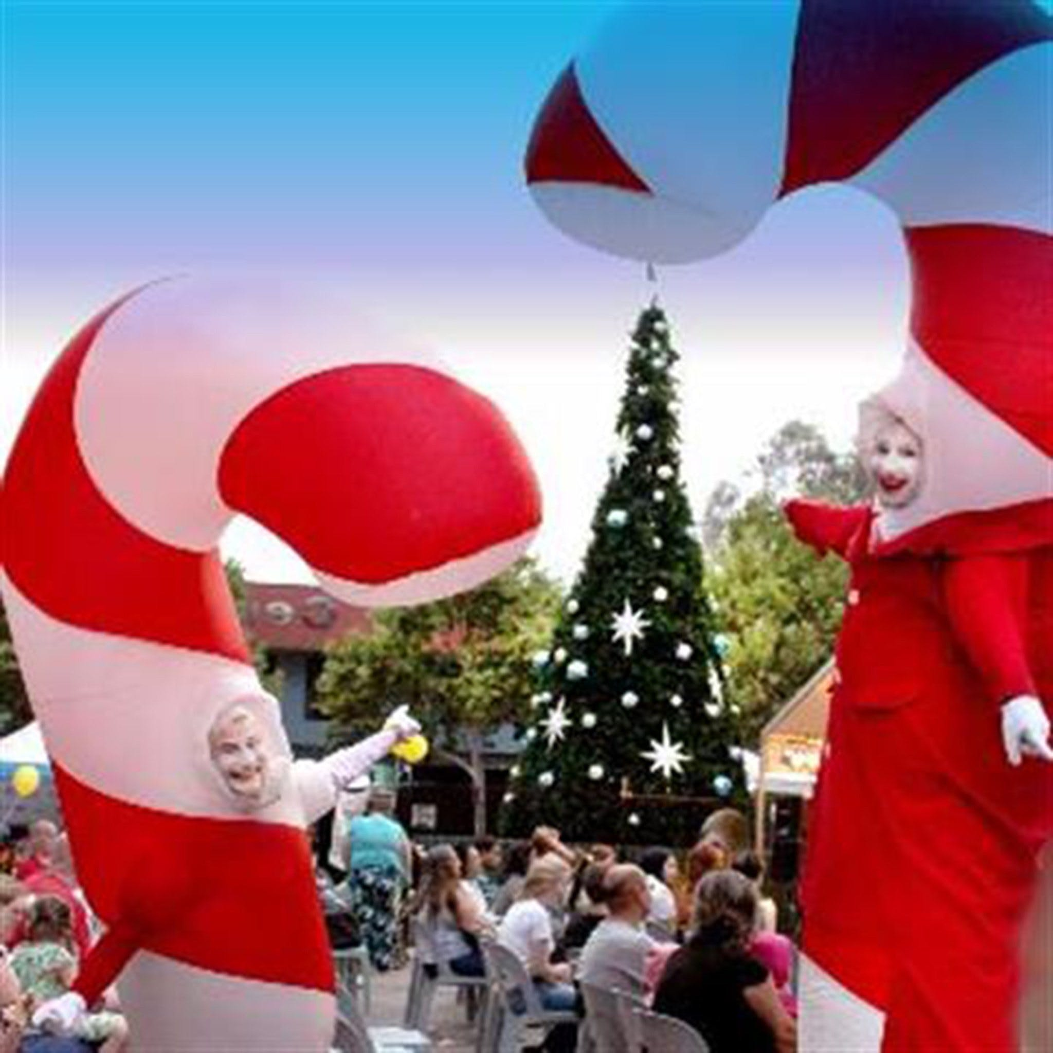 Blacktown Christmas Light Up Concert - Whitsundays Tourism