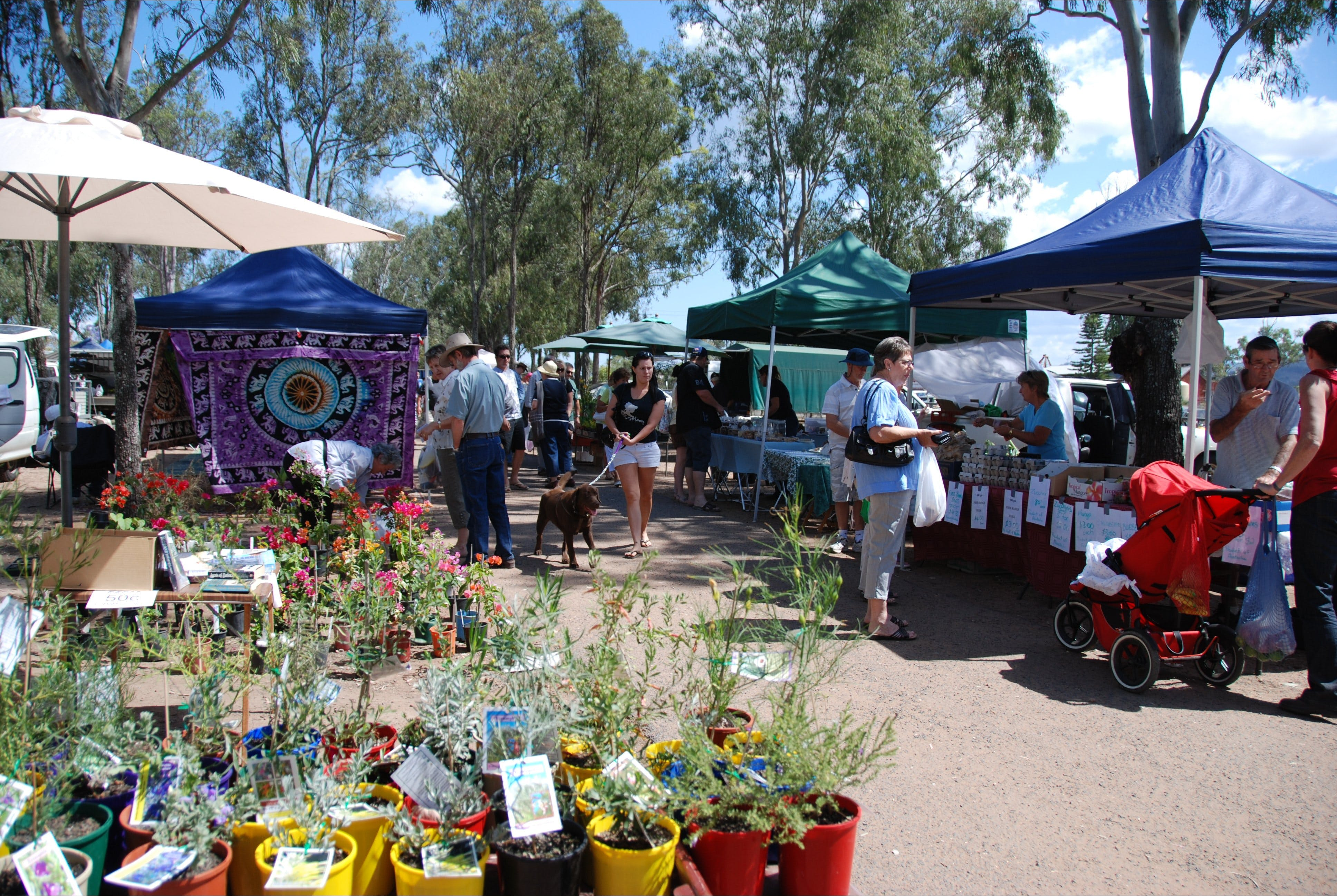 Fernvale Country Markets - Whitsundays Tourism