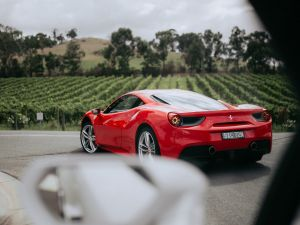 The Prancing Horse Supercar Drive Day Experience - Melbourne Yarra Valley - Whitsundays Tourism