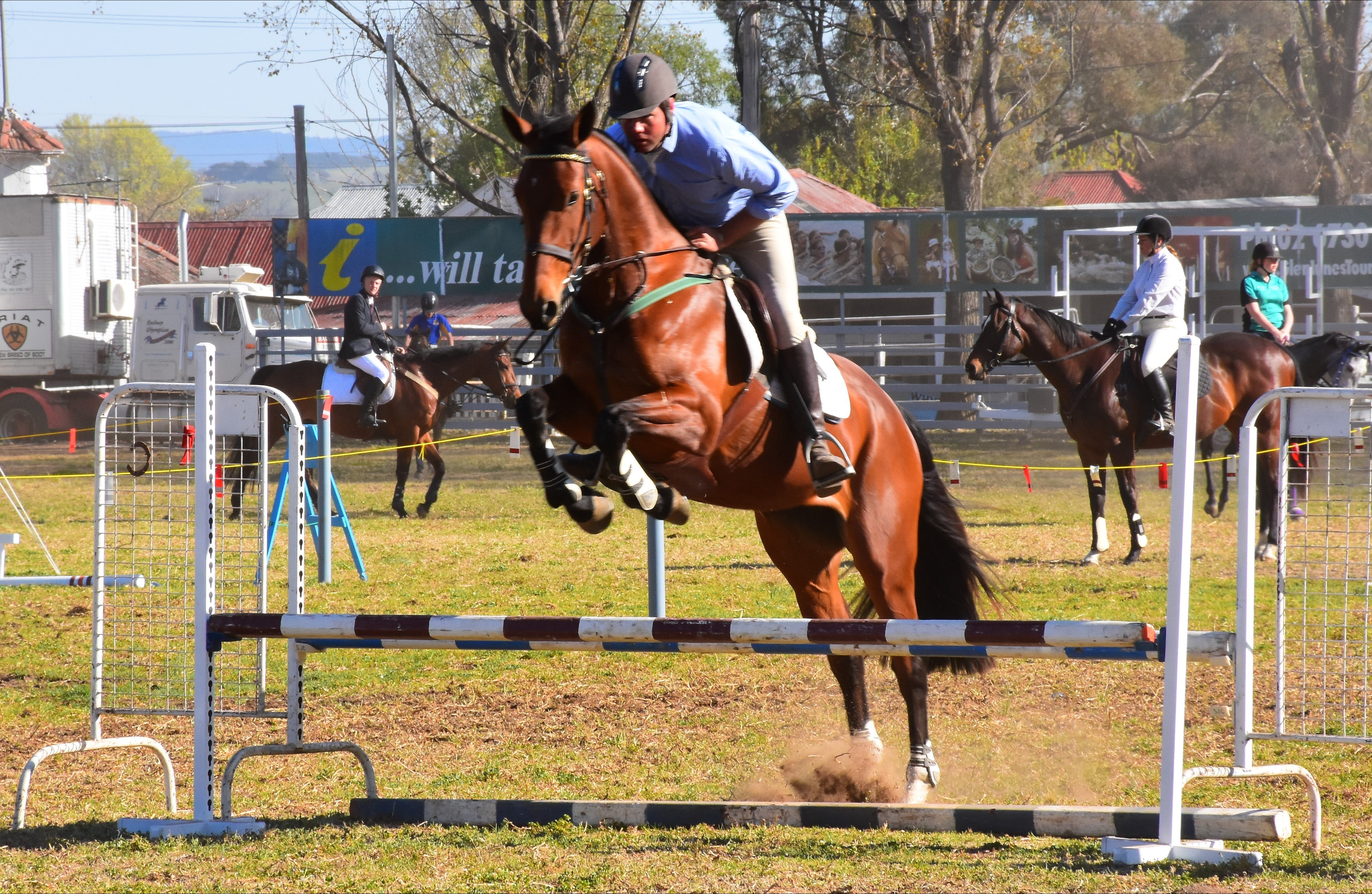 Glen Innes Pastoral and Agricultural Show - Whitsundays Tourism