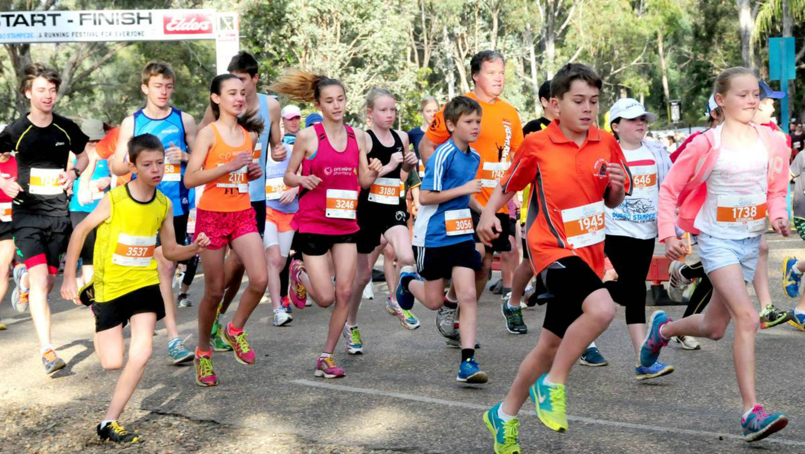 MAAS Group Dubbo Stampede Running Festival - Whitsundays Tourism