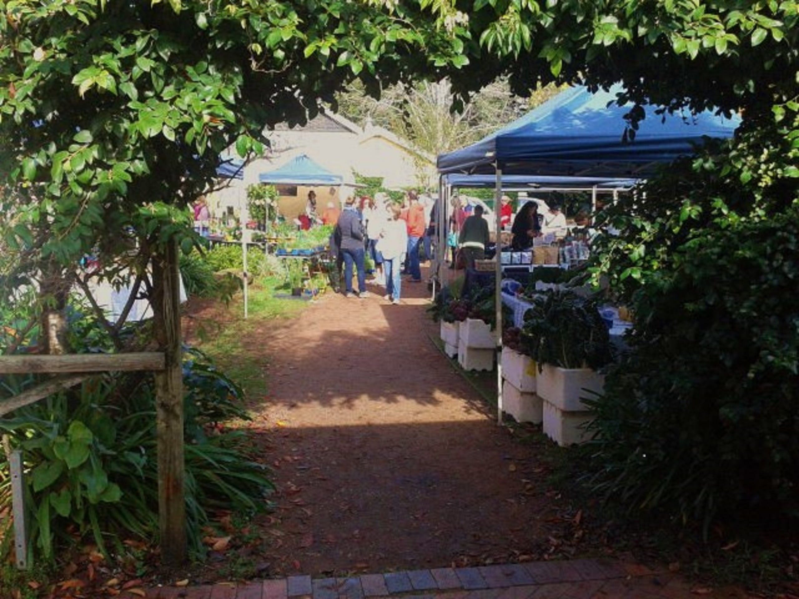 Berry Produce Market - Whitsundays Tourism
