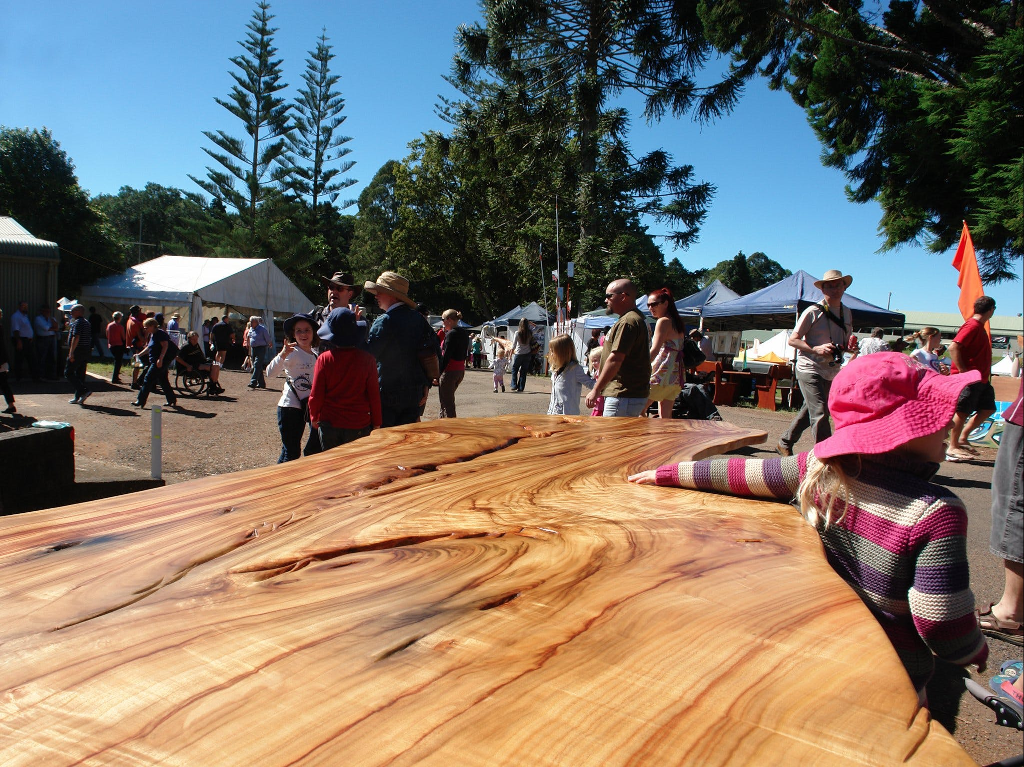 Maleny Wood Expo From Seed to Fine Furniture - Whitsundays Tourism