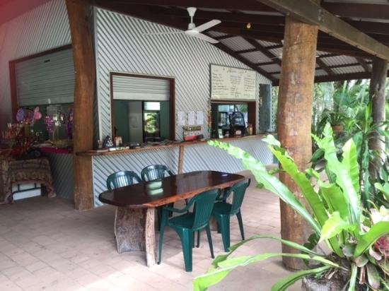 Blooms Cafe - Whitsundays Tourism