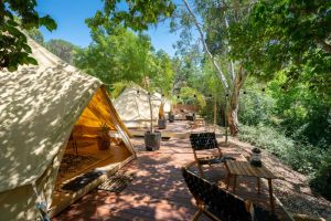 Castlemaine Gardens Luxury Glamping - Whitsundays Tourism
